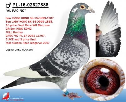GOL_965D9F-5B4EF5-CB6495-4181E1-8F0CA0-C3887C.jpg