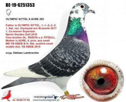 GOL_990E83-F368E3-EE6EAA-65A961-9B36AB-5D9349.jpg