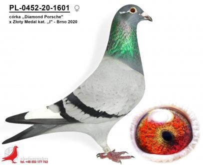 GOL_9C7B12-900F7F-C82F1A-6CCF09-433DE1-A75AAE.jpg