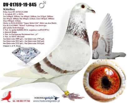 GOL_9D79C9-4C269E-323F13-5F5D8B-29C581-F0961D.jpg