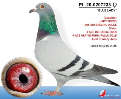 GOL_A2D65C-0CFC0C-AF8AD7-F3CA82-9EE7FD-21B33F.jpg