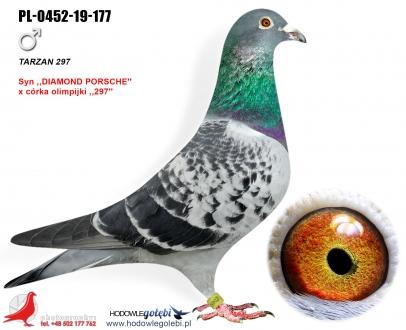 GOL_A73406-322BCD-68BC38-217678-6A752B-0C226B.jpg