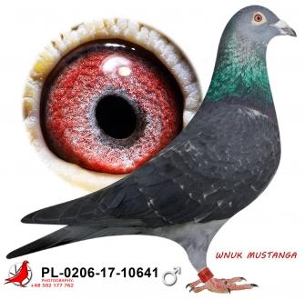 GOL_A859A5-A98433-107739-605531-18EFB3-5C6FFD.jpg