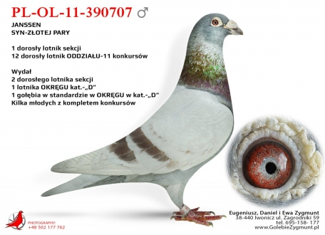 GOL_AD469B-40BCAE-FB3C4A-D2F5F9-B95204-47AB3B.jpg