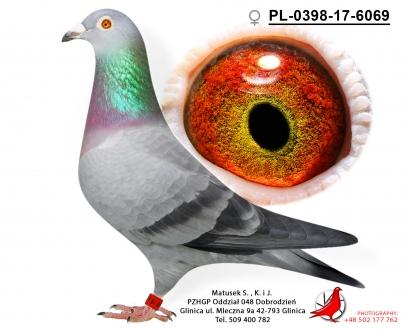 GOL_AE219A-A9299A-7C8C4E-68EB4C-B2860C-A1B5A0.jpg