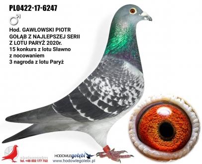 GOL_AF5598-FC7D3C-5FCD5D-DFFA47-1A814C-20401F.jpg