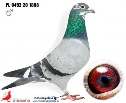 GOL_B480C6-C37AA3-764C0B-6EB5C2-FED258-1C274F.jpg