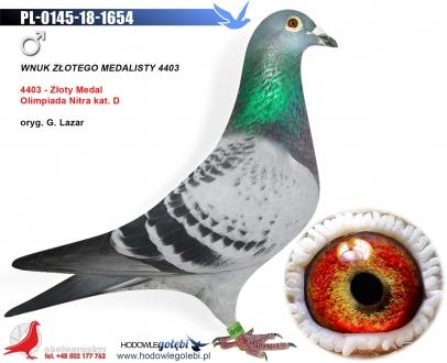 GOL_BA09BF-509FE6-CA4B75-791FD1-576A70-18440E.jpg