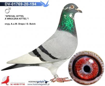 GOL_C2A3EC-040DD9-097916-1AD412-9A8821-F5F590.jpg