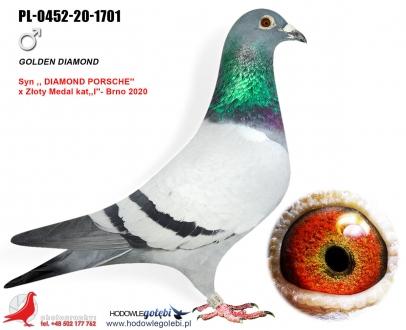 GOL_C2AF10-60C70A-8ADDE0-077A6D-7A8D6D-0C168C.jpg