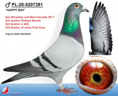 GOL_CBF65F-7F29B5-422568-011859-8EE605-A81551.jpg