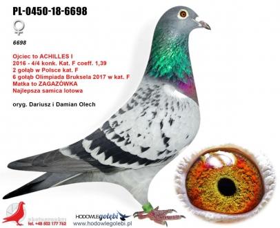 GOL_CE7515-094CAB-305D2D-B244A1-060762-A0591C.jpg