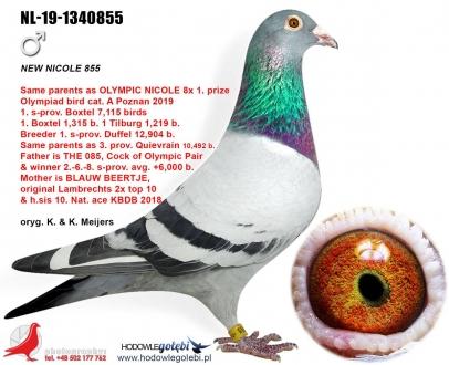 GOL_D318E7-F7F996-EA0FC0-E4C5BE-2BCC52-51EE67.jpg