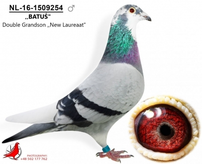 GOL_E20654-2C20D7-36E2C5-1FBD30-6B4F51-95AE44.jpg