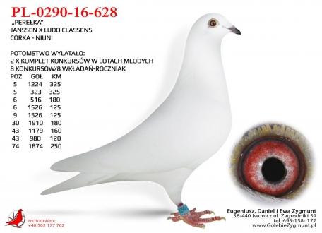 GOL_EA5A91-64EE1A-5EFC42-3D0879-AEE48E-2B351F.jpg