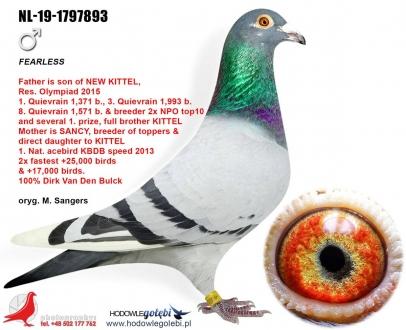 GOL_EBEB1D-691405-D97F01-53733A-ED79DD-11F3D2.jpg