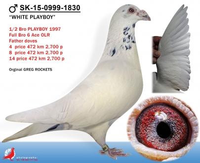 GOL_EF2413-E975C3-A82F8D-16C4FF-BB46D5-10F240.jpg