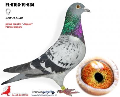 GOL_F5F18D-F61AC9-3890C2-015AD5-0047BA-B10B1C.jpg