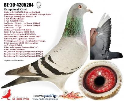 GOL_F6D736-261FC0-13F729-BC71EC-A229C0-911D1E.jpg