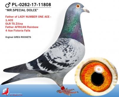 GOL_F890BF-91D304-B66C89-DDBCE7-FBD2F8-1CA33E.jpg