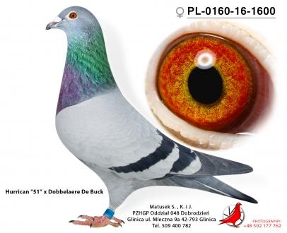 GOL_FF62AB-A2A606-93C9E4-C3AA74-42B810-34043C.jpg